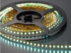 Strip Light 60LED/M SMD5050 Cool White - 5 meter reel